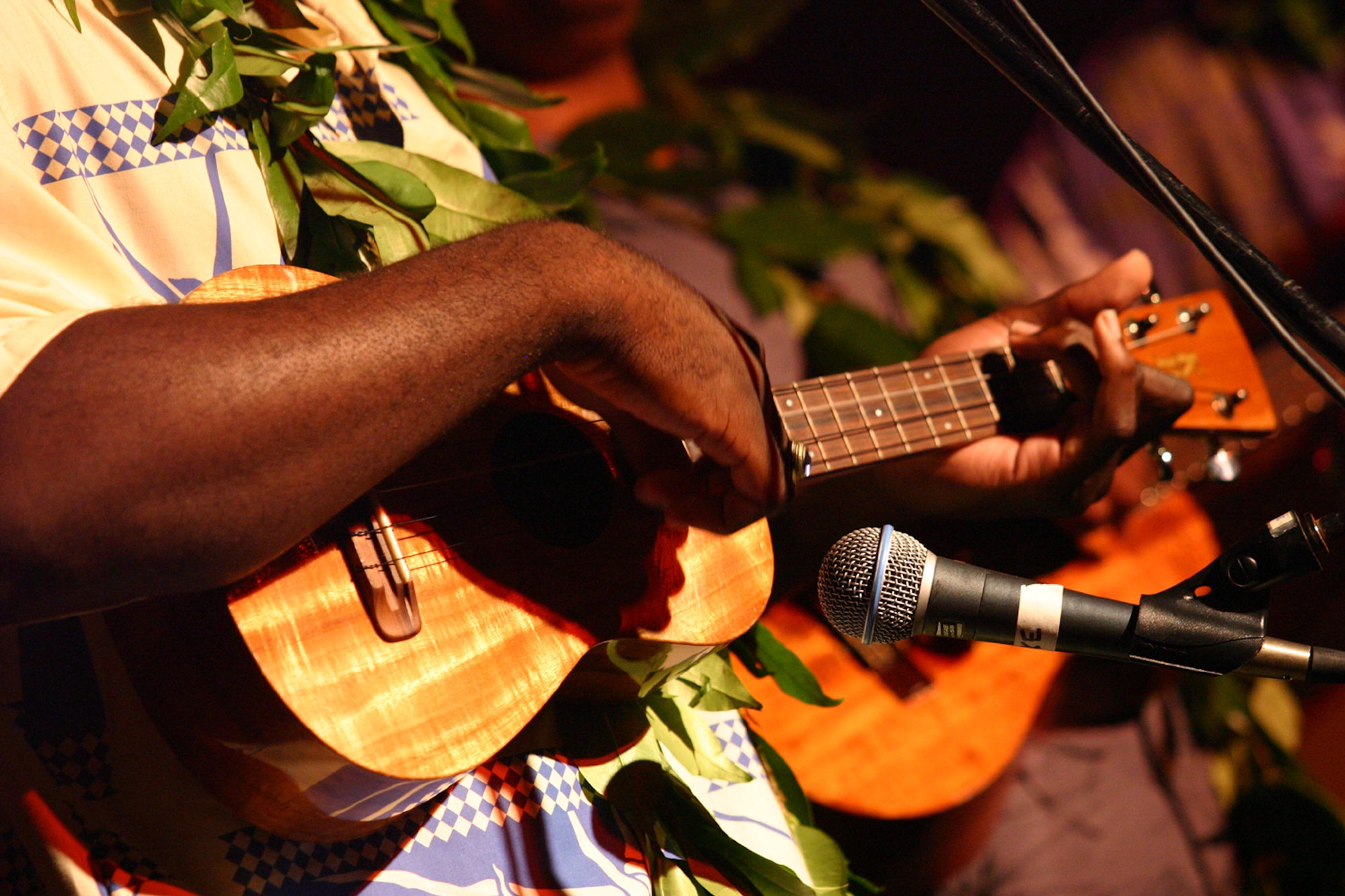Hawaii`s Creative Industries | Performing Arts & Music